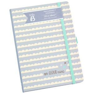 Busy B Baby Pregnancy Journal Book