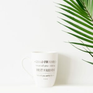 Good Friends Know all Your Stories Mug