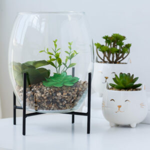 Succulent Glass Dome on Stand