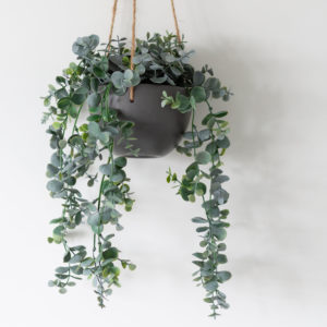 Faux Eucalyptus in Hanging Pot
