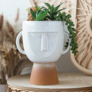 Pagan Face White Planter With Faux Succulent
