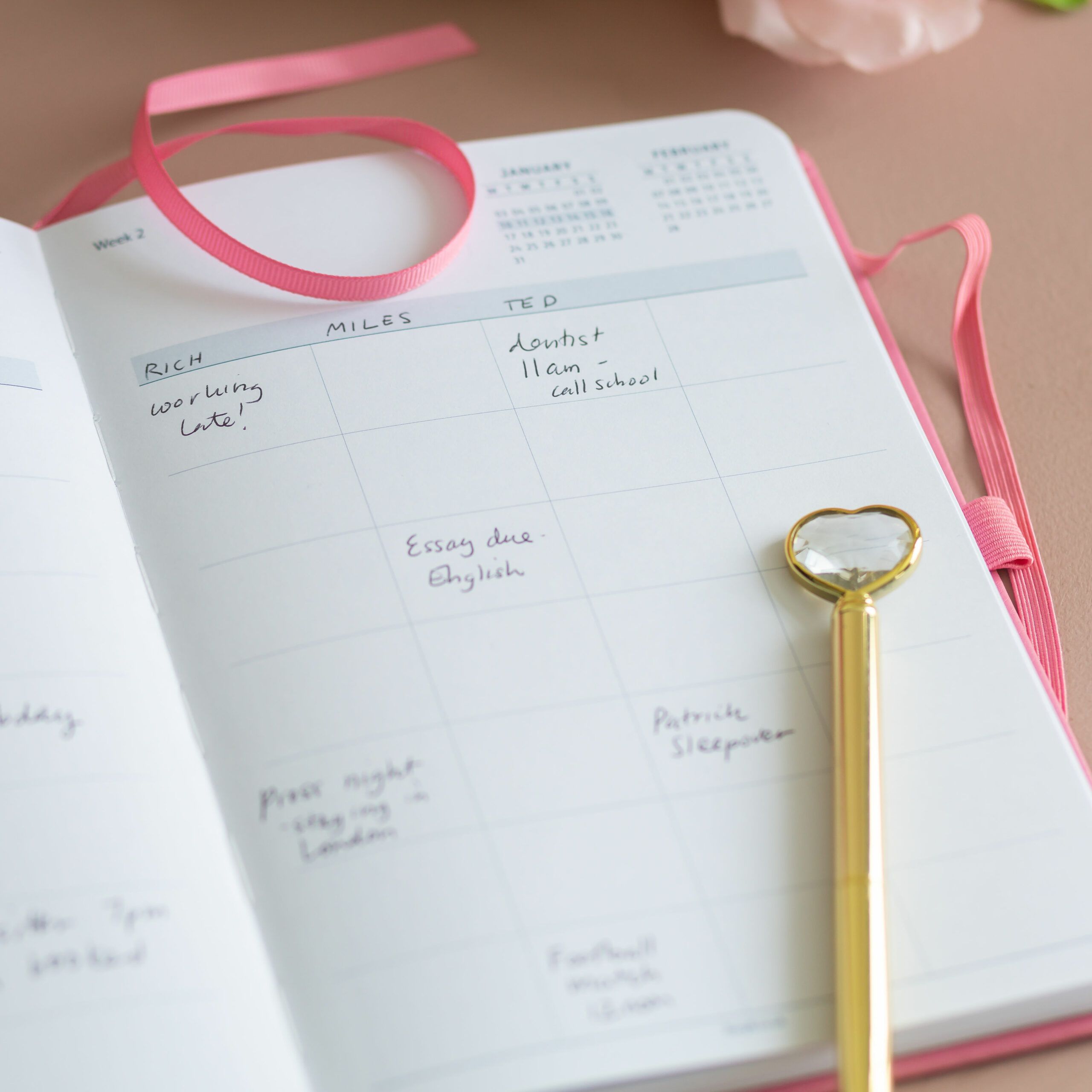 Busy B Pink Family Planner 2022